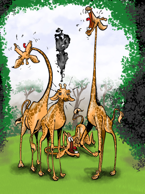 Not all are long necked in a Tower of Giraffes